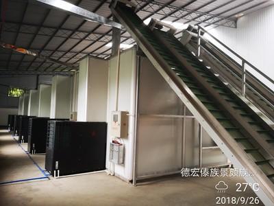 澳洲堅果(夏果)空氣能熱泵自動化烘幹線